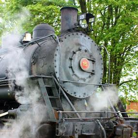 Steamer by Kathleen Whalen - Transportation Trains