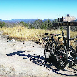 Dupont by Mary Kaye Zugelder - Sports & Fitness Cycling ( mountains, dupont, mountain biking, slickrock, woods,  )