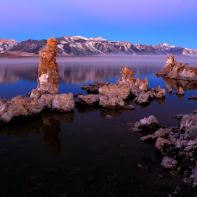 Motorboat to Mars.. by Dennis Ducilla - Landscapes Waterscapes ( water, mountains, mono lake, california, tufa, sunrise, ducilla )