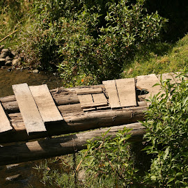Footbridge Over a Stream by Robert Hamm - Buildings & Architecture Bridges & Suspended Structures ( plant, stream, footbridge, ecuador, nature, cotacachi, outdoor, creek, farmland, bridge, wooden bridge, river )
