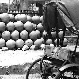 Jaipur by Siân Oldfield - City,  Street & Park  Street Scenes