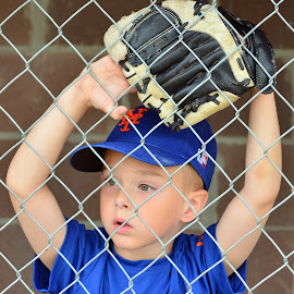 Watching Game Progress Intently! by Nebula Bremer - Sports & Fitness Basketball ( child, medium quality, one face, blurred, baseball cap, baseball, glove, mit, closeup )