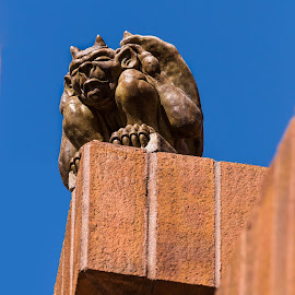 GarGoyle by Ken Baynard - Buildings & Architecture Statues & Monuments