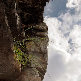 by Colin Anderson - Nature Up Close Rock & Stone