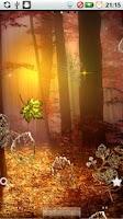 Screenshot of Fall Golden Diamond Leaf DEMO
