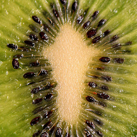 Kiwi fruit. by Andrew Piekut - Food & Drink Fruits & Vegetables (  )