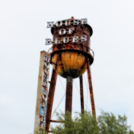 House of Blues Orlando by Kimmarie Martinez - City,  Street & Park  Amusement Parks ( house of blues, downtown disney, orlando, rusty, blues, water tower )