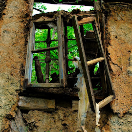 by Dalibor Davidovic - Buildings & Architecture Decaying & Abandoned ( window, green )