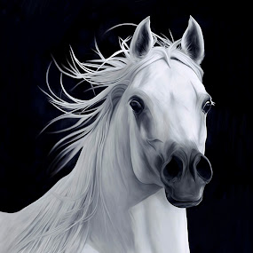Digital Painting Arabian Mare by Manal Ali - Digital Art Animals ( mares, horses, horse, painting, digital, , face, photography, closeup, close, up )