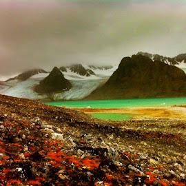Svalbard by Tyrell Heaton - Instagram & Mobile iPhone ( svalbard )