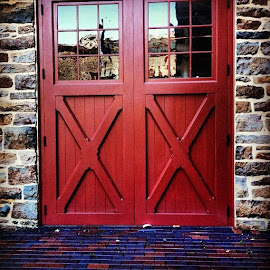 Red Door by Shannon Reinhardt - Buildings & Architecture Public & Historical