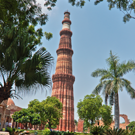 Qutub Minar rear view. by Sridhar Balasubramanian - Buildings & Architecture Statues & Monuments ( indian hisorical, qutb-ud-din aibak, slave dynasty, qutub minar, kutub minar, india, delhi )