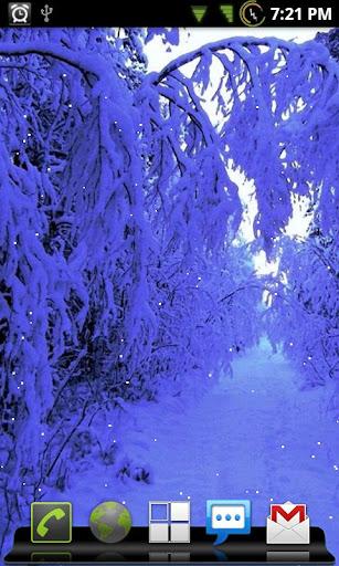 Wintery Wonderland