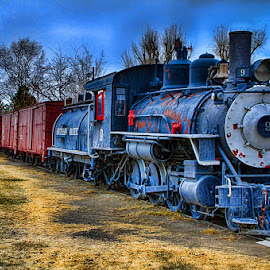 Vintage Railroad by Fred Herring - Transportation Trains