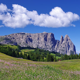 Siusi 18 by Stefano Landenna - Landscapes Mountains & Hills ( clouds, trentino, siusi, scillar, dolomites, italy, alps )