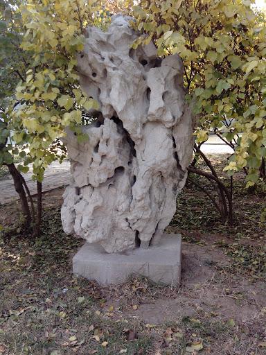 藏着块石头
