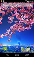 Screenshot of Sakura Live Wallpaper HD