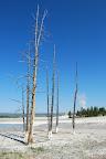 Yellowstone og omegn 058.jpg