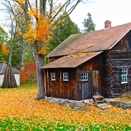 Rustic Fall Home by Kathy Suttles - Buildings & Architecture Other Exteriors ( home, cabin, old, fall, leaves, rustic )