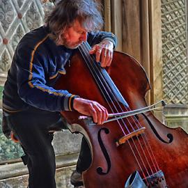 Cellist by Ferdinand Ludo - People Musicians & Entertainers ( new york, central park, cello, under the bridge )
