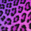 GO SMS Girly Cheetah Theme icon