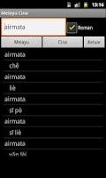 Screenshot of Malay Chinese Dictionary