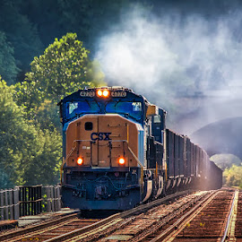 Full steam ahead by Izzy Kapetanovic - Transportation Trains ( mountain, harper's ferry, railway, train, trees, tracks, transportation, tunnel, steam )