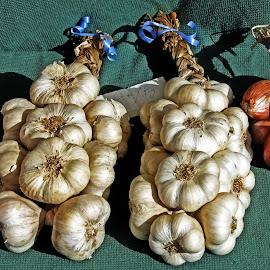 Garlic by Michael Moore - Food & Drink Fruits & Vegetables ( garlic )