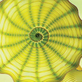 Blown Glass Ivy by Terri Kvetko Gonzalez - Artistic Objects Glass ( green, glass, artistic object, hand-blown glass, ivy, close-up )
