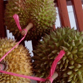 durian by Barlianti Vavo - Food & Drink Fruits & Vegetables ( fruit, durian )