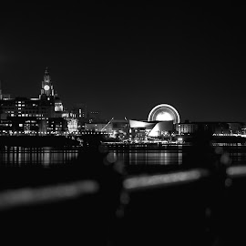 Liverpool Cityscape by Paul Clark - City,  Street & Park  Skylines ( water, barrier, black and white, clock, liverpool, wheels, buildings, cityscape, docks )
