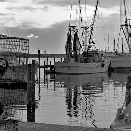 Docks by Tony Moore - Transportation Boats ( calm, water, black and white, bw, cloudy, fishing, docks, boat, coast )