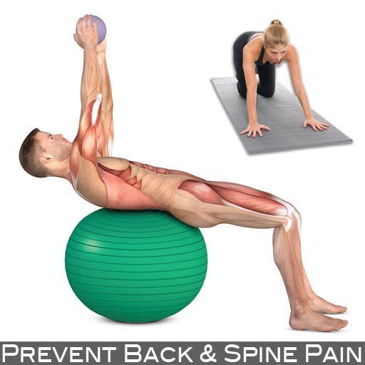 Prevent Back & Spine Pain LOGO-APP點子