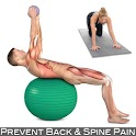 Prevent Back Pain | Core icon