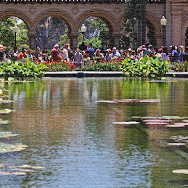 Balboa Park by Rose Smith - People Group/Corporate ( many, park, balboa, at, people, crowd, humanity, society )