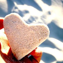 Gypsum Heart  by Syaam St Louis - Nature Up Close Sand