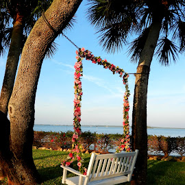 Flowered Swing by Kathy Rose Willis - Artistic Objects Furniture ( water, blue, florida, white, trees, flowers, swing, green grass,  )