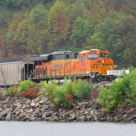 Train to  Hanibal, by Mississippi River by Walter Carlson - Transportation Trains ( train, mississisppi river, high quality, in focus, hanibal, mark twain )
