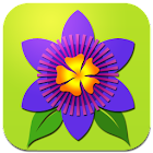 Bloemen Centrale Holland icon