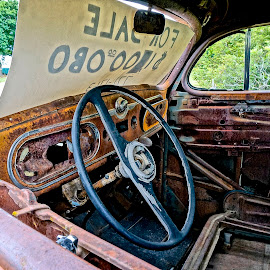 Only $1300 by Barbara Brock - Transportation Automobiles ( old car, interior of decaying car, decayed car, antique car )