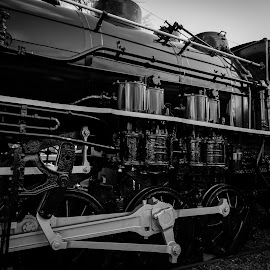 Coal Hauler by Mark McLaughlin - Transportation Trains