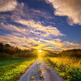 Onward the Traveler Goes by Phil Koch - Landscapes Prairies, Meadows & Fields ( vertical, photograph, fine art, travel, yellow, love, sky, tree, nature, autumn, trail, flowers, flower, orange, twilight, agriculture, horizon, portrait, environment, dawn, season, serene, trees, floral, inspirational, natural light, wisconsin, ray, road, landscape, phil koch, spring, sun, photography, path, horizons, inspired, clouds, office, park, green, dirt road, scenic, morning, shadows, wild flowers, field, red, color, blue, sunset, peace, fall, meadow, landscapephotography, summer, beam, earth, sunrise, landscapes, mist )