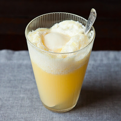 Fizzy Orange Sherbet Cooler