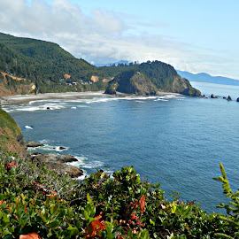 Pacific Ocean View by Tammy Morley - Landscapes Waterscapes ( shoreline, lighthouse, oregon coast, cape meares, ocean view )