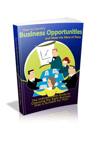 Identify Business Opportunity