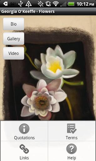Georgia O'Keeffe - Flowers