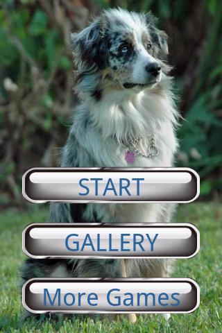 狗狗拼圖:澳大利亞牧羊犬