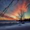 IMG_5717b_Snapseed.jpg