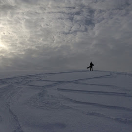 Snowy hill by Sophie Carlson - Sports & Fitness Snow Sports ( snow snowboard tracks sun silhouette sports boarding clouds hill fun )