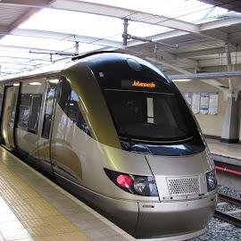 Gautrain by Amanda Coertze - Transportation Trains ( gautrain, train,  )